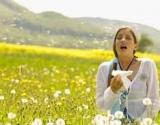 Pavasaris – alergijų metas