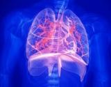 Kelias į plaučių ligas prasideda nuo pirmojo įtraukto dūmo
