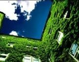 Mus išgelbės žalesnės darbo vietos