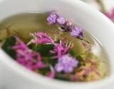 Imuniteto stiprintojai: maisto papildai, padedantys apsisaugoti nuo peršalimo