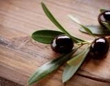 Vitaminas E – sveikatos ir grožio vitaminas
