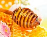 Medus stabdo senėjimą