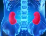 Diabetas ir inkstų ligos