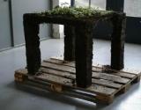 Ekologija - susipažinkite su ekologiškais baldais