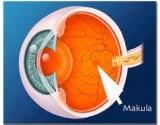 Omega-3 gali apsaugoti nuo makulos degeneracijos