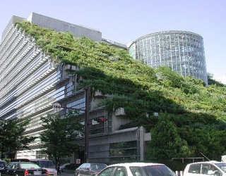 """""""Žalieji stogai"""" gali sutramdyti globalinį atšilimą"""