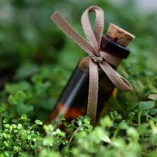 Ekologija - organiški kvepalai