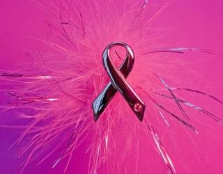 Pirmas žingsnis norint apsisaugoti nuo krūties vėžio – pažinti savo giminaičius