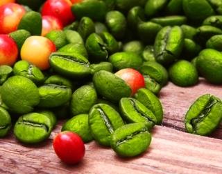 Skanus būdas atsikratyti nereikalingų kilogramų – žalia kava